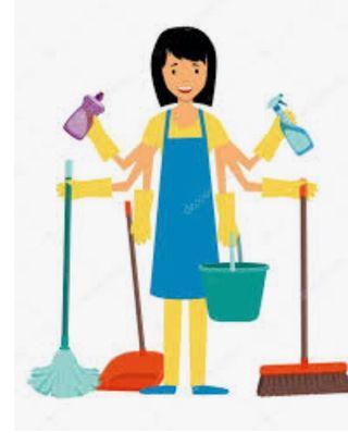 Limpieza domicilios etc..