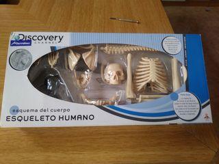 juguete esquema esqueleto humano