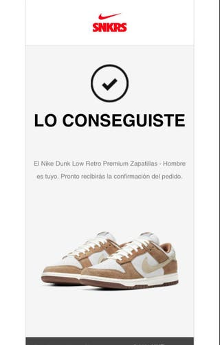 Nike Dunk Low Retro Premium Zapatillas - Hombre