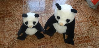 2 peluches oso