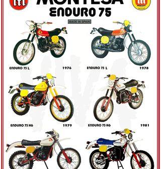Montesa. Poster Montesa enduro 75 L 75 H6