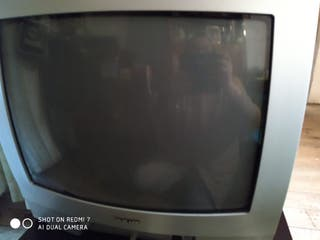 "television 21"""