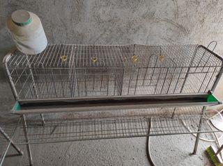 jaulas para gallinas ponedoras varias