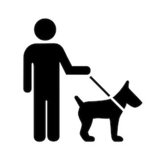 Paseo a perros de todo tipo.