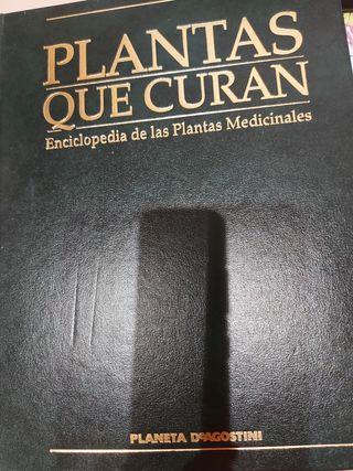 libro, plantas que curan