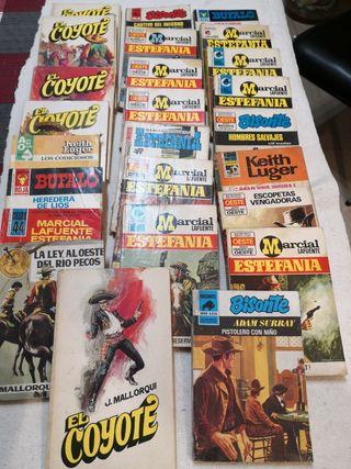 25 novelas del Oeste