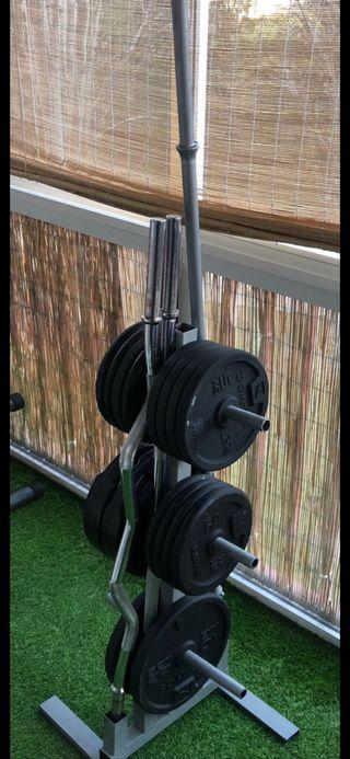 Árbol soporte para discos pesas