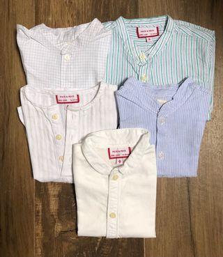Lote cinco camisas