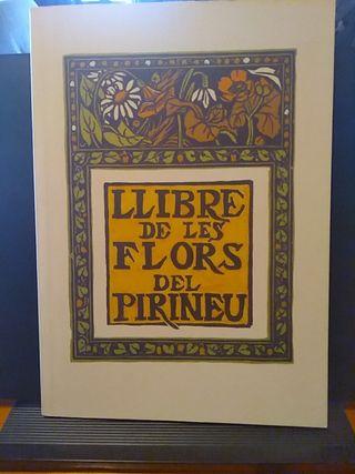 Llibre de les flors del Pirineu
