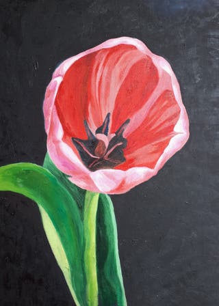 cuadro al óleo. flor