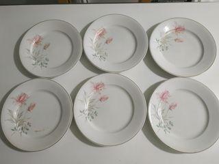 6 platos de loza de 23cm