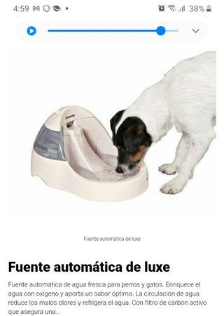 Fuente automatica para perros