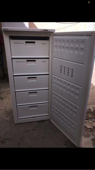 Congelador industrial indesit LO LLEVO!