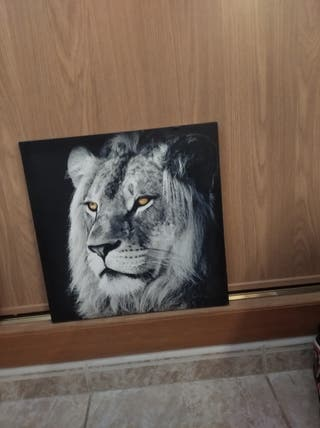 Cuadro de tigre