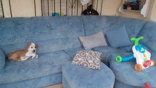 sofá esquinero azul