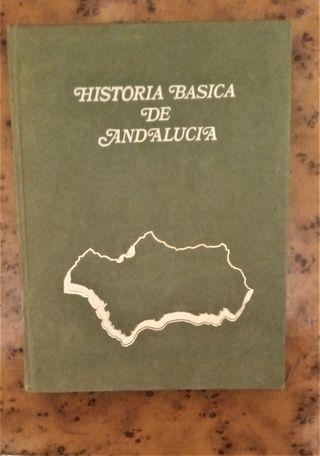 HISTORIA BÁSICA DE ANDALUCÍA de Fernando Repiso