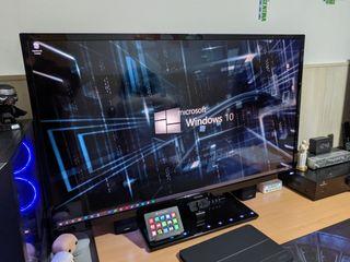 "monitor philips 43"" 4k HDR10"