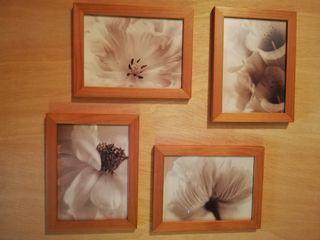 Lote cuadros flores.