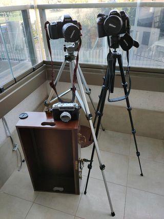 Cámaras Nikon y Yashica