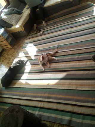 alfombra grande IKEA