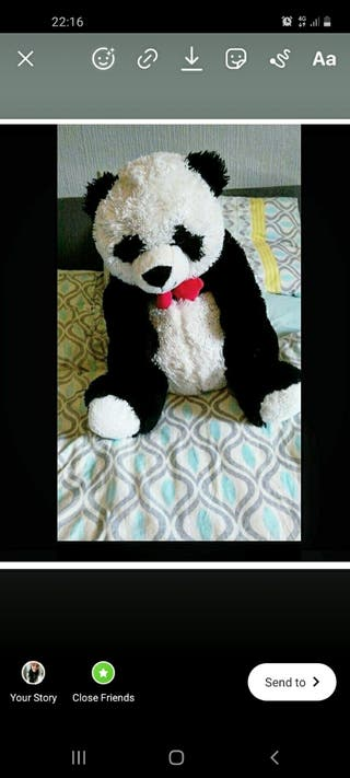 Large. Panda Teddy. 3ft Tall