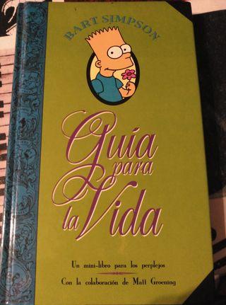 Libro Bart Simpson