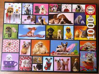Puzzle Momentos compartidos Animales - 1000 piezas