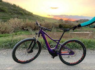 Bicicleta eléctrica de montaña specialized levo.