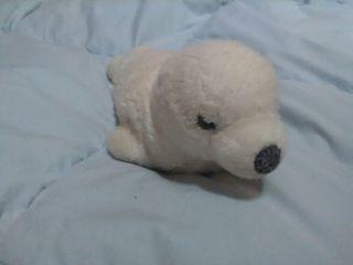 peluche foca