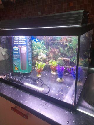 acuario de 40 litros.