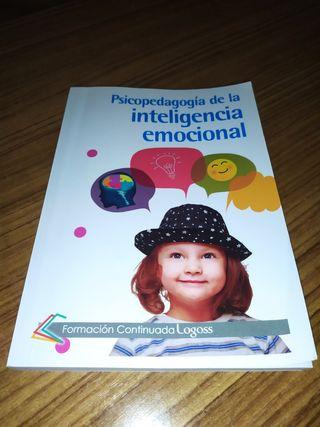 Psicopedagogía de la inteligencia emocional.