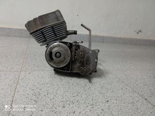 motor mineralli Rieju moto