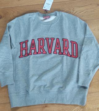 sudadera Harvard zara