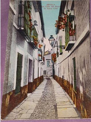 Antigua tarjeta foto postal - sin usar - Sevilla