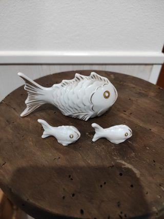 peces antiguos