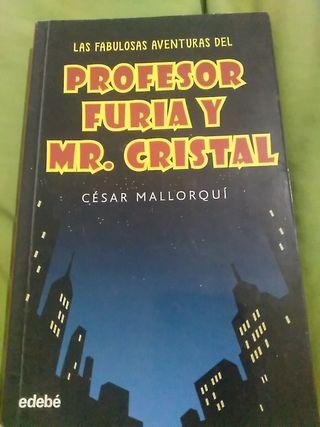 profesor furia y mr.cristal