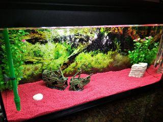 acuario 90L