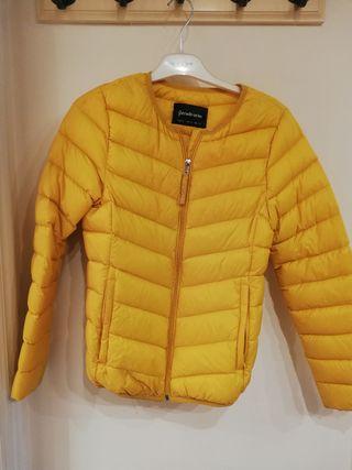 plumifero amarillo
