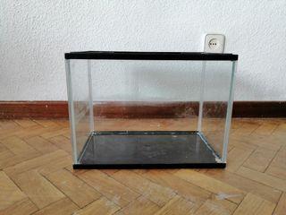 acuario o terrario