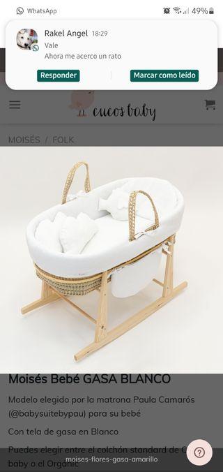 moisés bebé
