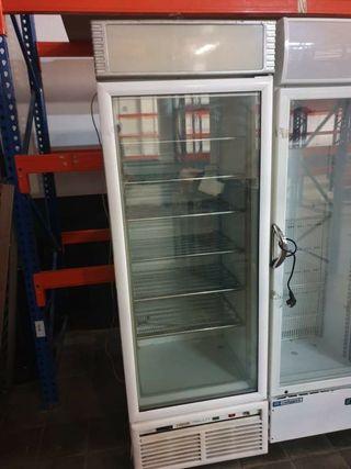 deja wasap congelador industrial expositora