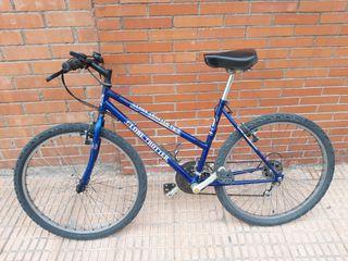 Bicicleta Rueda 26