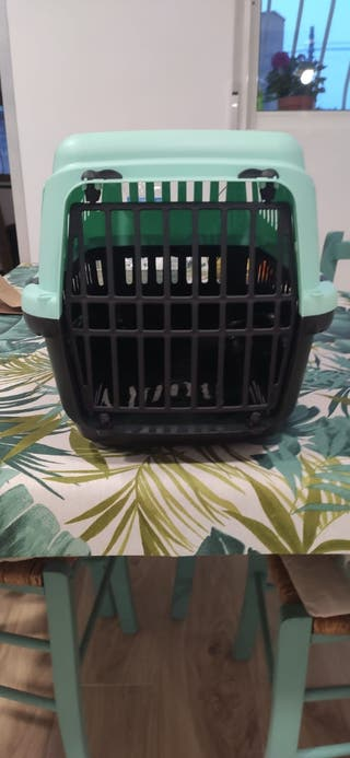 transportin gato