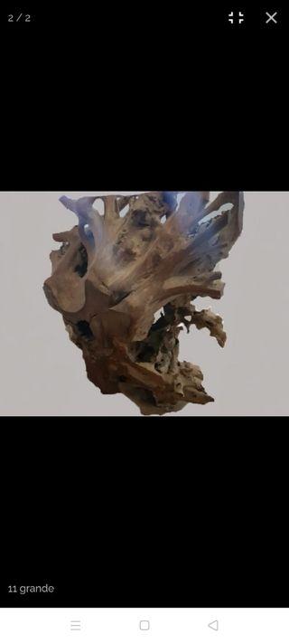 raíz decoración