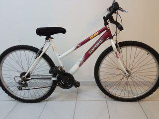 Bicicleta de montaña Topbike, unixes, 98 €.