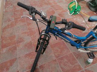 Bicicleta cuadro Señora.