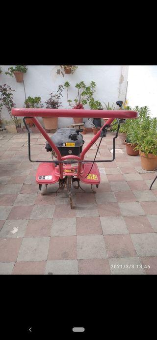 Motoazada de gasolina MTD modelo T/245