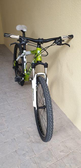 bici Scott