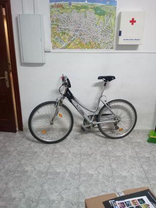 Vendo o cambio bicicleta paseo