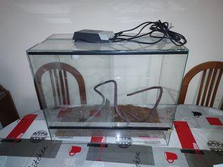 terrario cristal